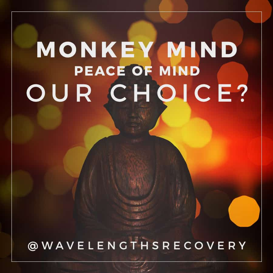 Monkey Mind or Peace or Mind