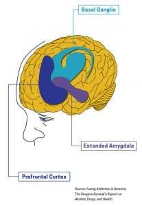 brainimage wavelengths